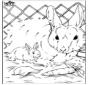 Une los puntos - conejo