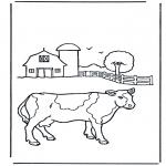 Diversos - Vaca 1